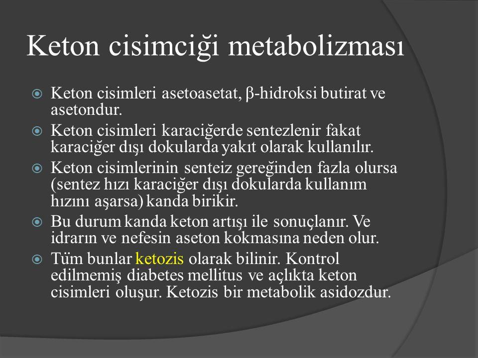 Keton cisimciği metabolizması