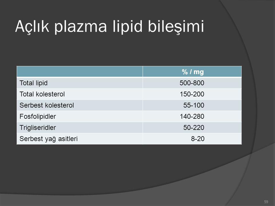 Açlık plazma lipid bileşimi