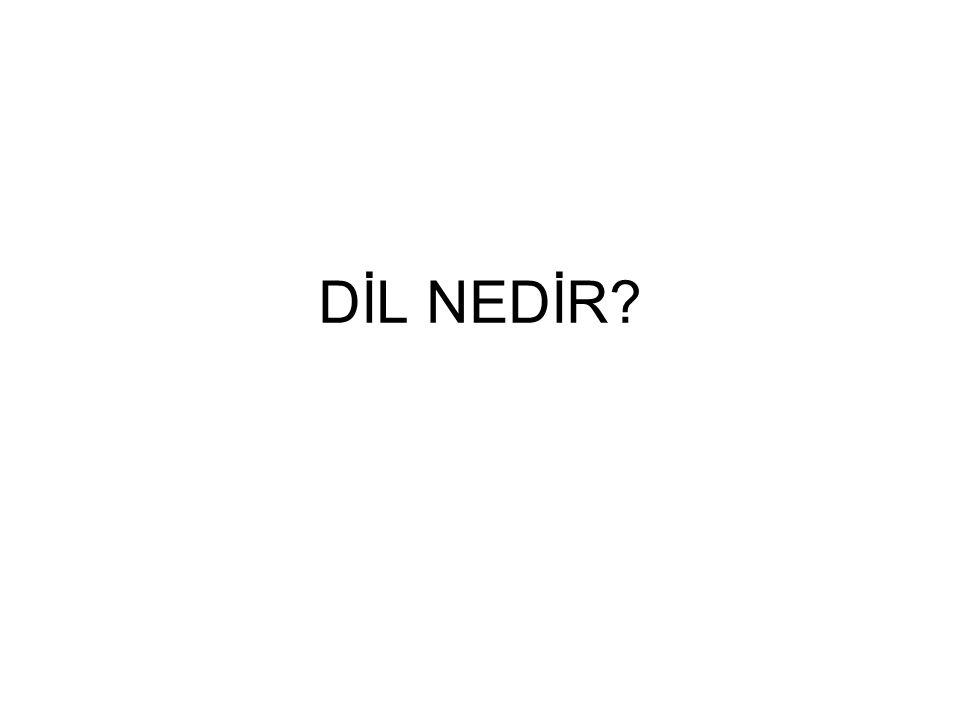 DİL NEDİR