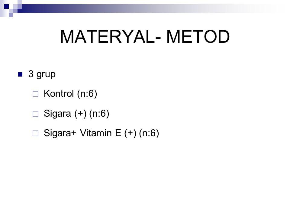 MATERYAL- METOD 3 grup Kontrol (n:6) Sigara (+) (n:6)