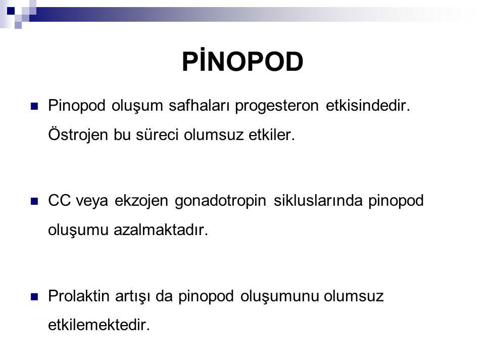 PİNOPOD Pinopod oluşum safhaları progesteron etkisindedir. Östrojen bu süreci olumsuz etkiler.