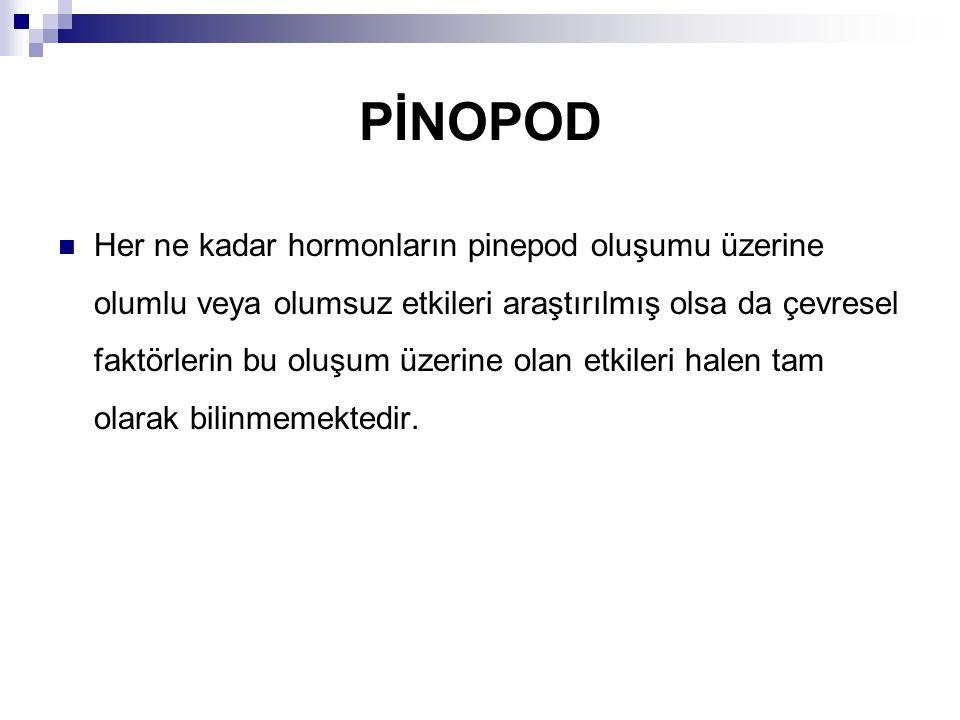 PİNOPOD