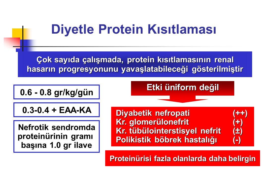 Diyetle Protein Kısıtlaması