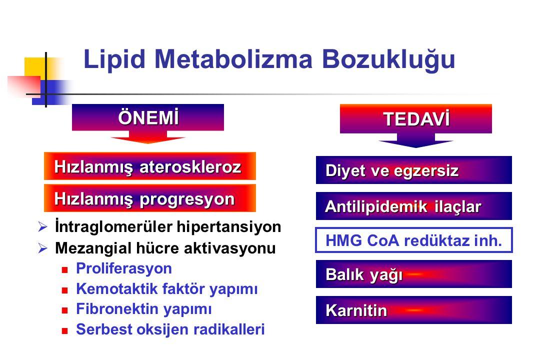 Lipid Metabolizma Bozukluğu