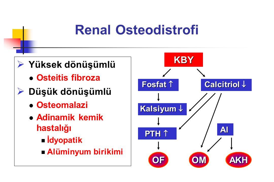 Renal Osteodistrofi Yüksek dönüşümlü Düşük dönüşümlü KBY OF OM