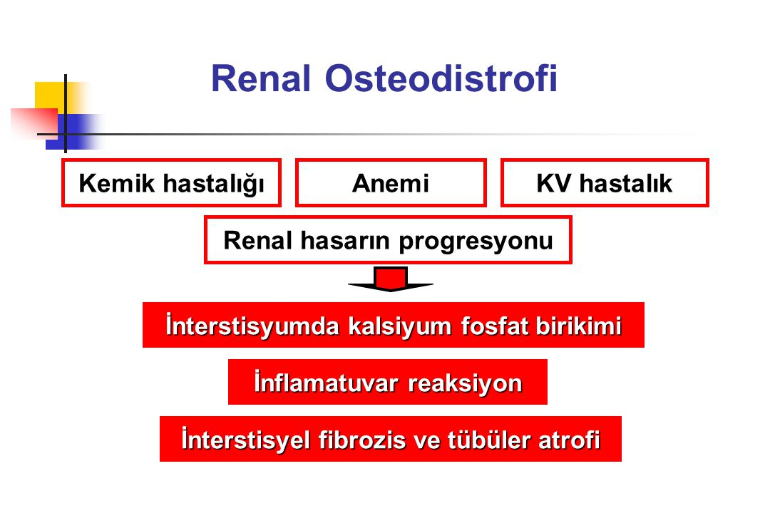 Renal Osteodistrofi Kemik hastalığı Anemi KV hastalık