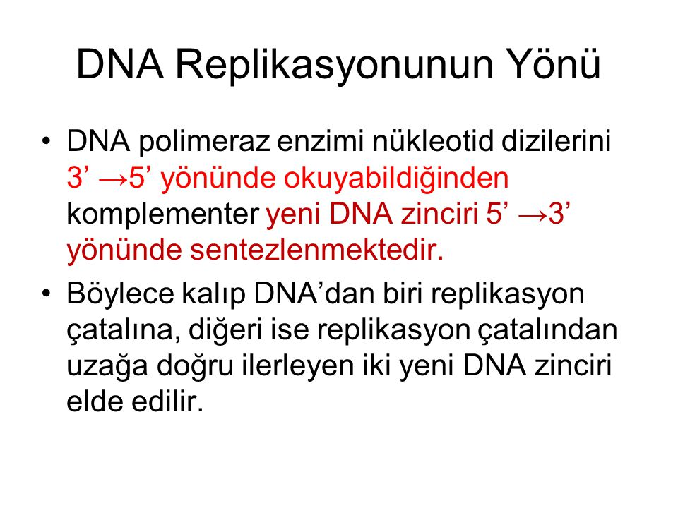 DNA Replikasyonunun Yönü