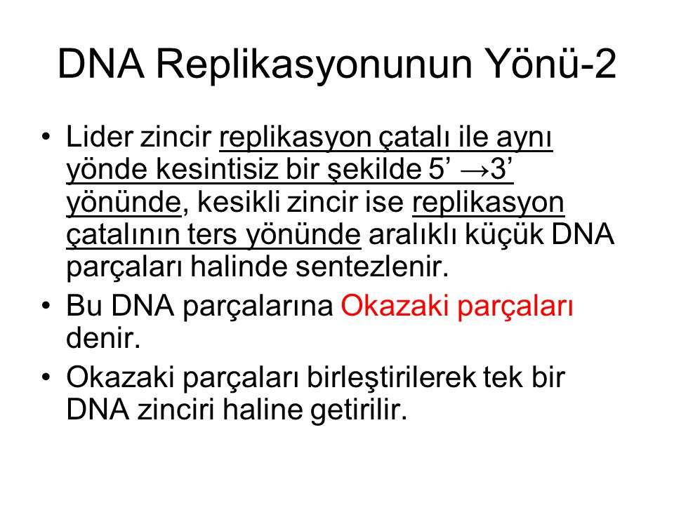 DNA Replikasyonunun Yönü-2