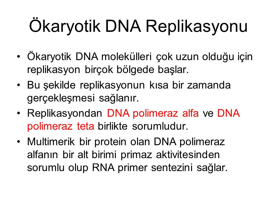 Ökaryotik DNA Replikasyonu