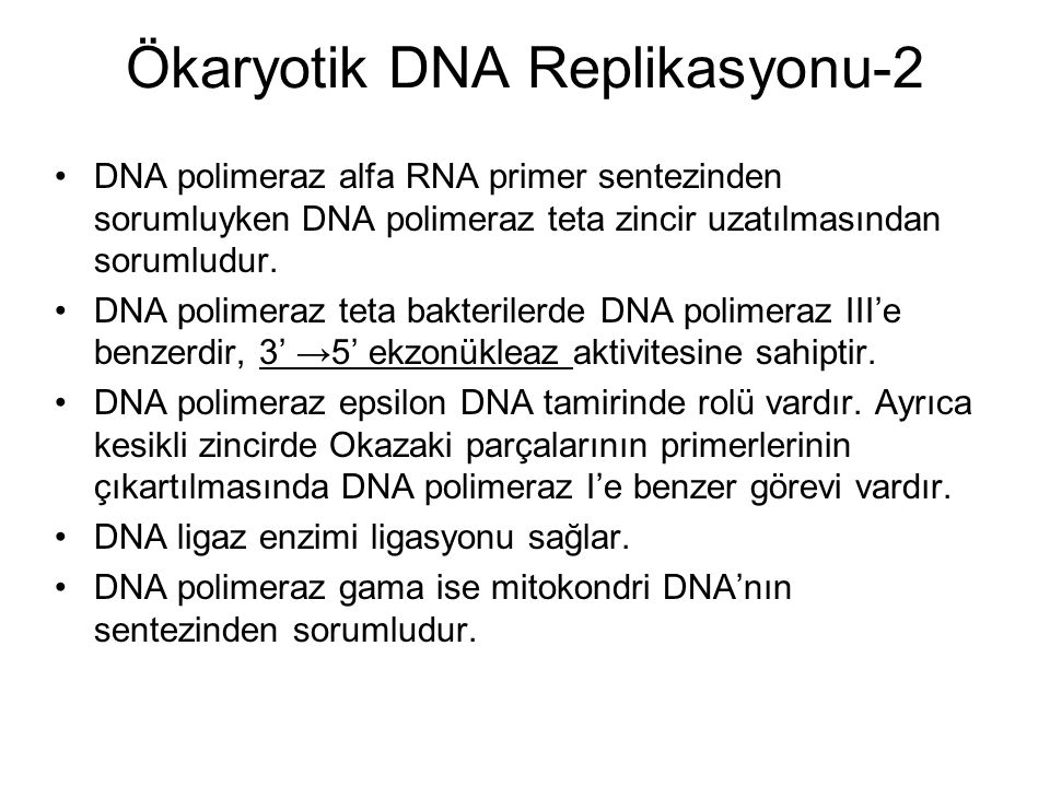 Ökaryotik DNA Replikasyonu-2