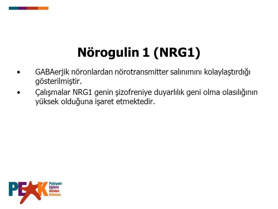 Nörogulin 1 (NRG1) GABAerjik nöronlardan nörotransmitter salınımını kolaylaştırdığı gösterilmiştir.