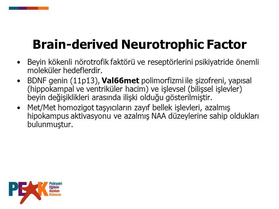 Brain-derived Neurotrophic Factor