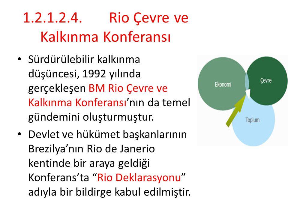1.2.1.2.4. Rio Çevre ve Kalkınma Konferansı