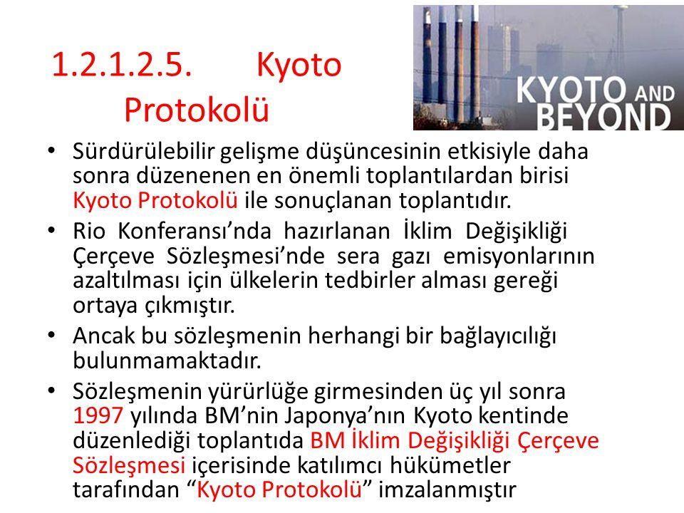 1.2.1.2.5. Kyoto Protokolü