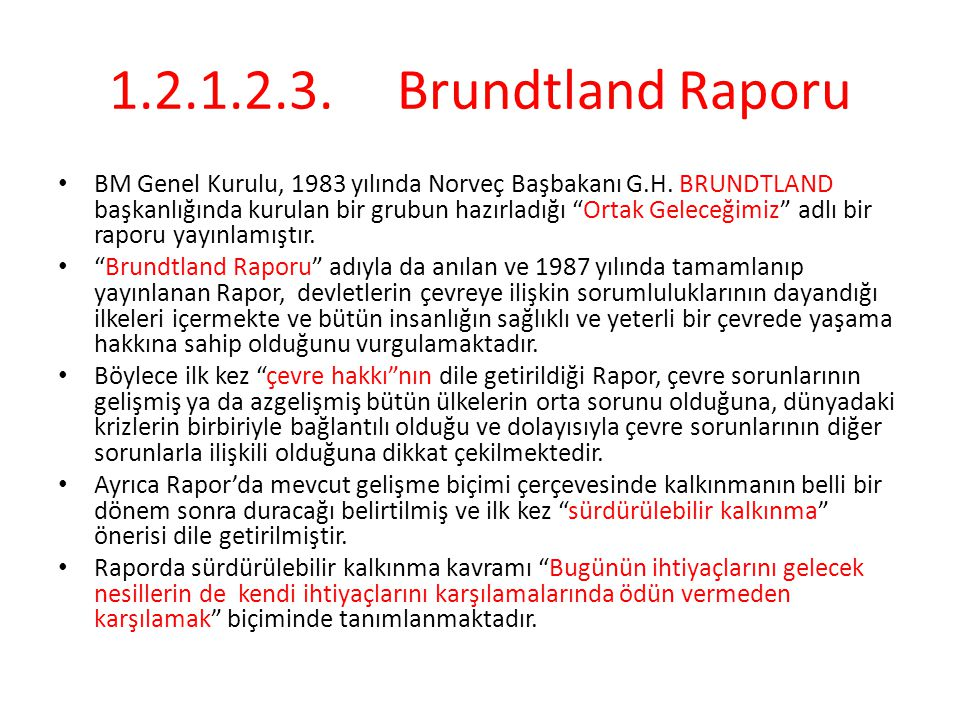 1.2.1.2.3. Brundtland Raporu