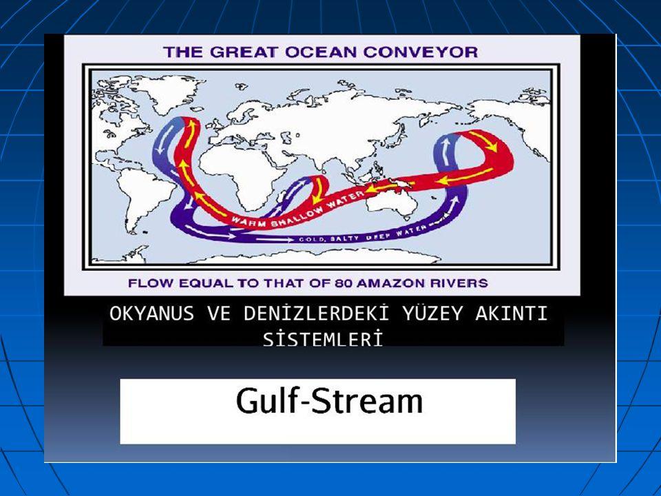 Mükemmel Ayarlanmış Bir Sistem: OKYANUS AKINTILARI (Gulf-Stream)