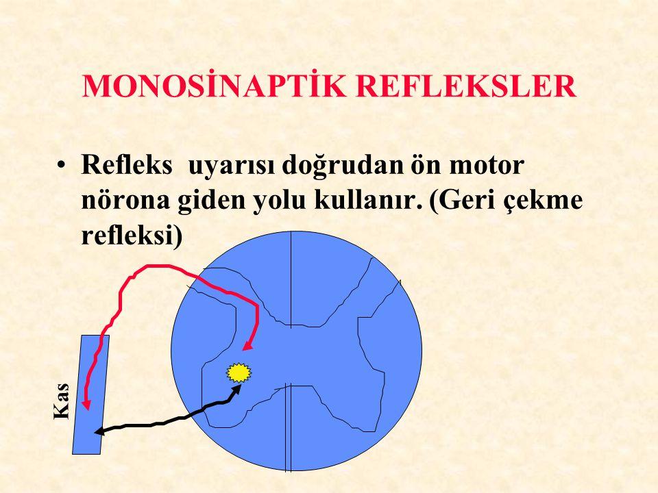 MONOSİNAPTİK REFLEKSLER