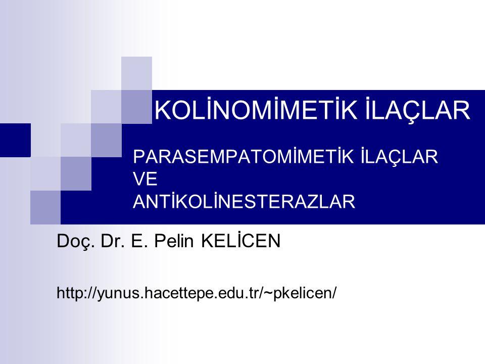 Doç. Dr. E. Pelin KELİCEN http://yunus.hacettepe.edu.tr/~pkelicen/