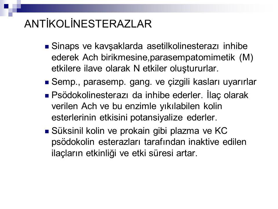 ANTİKOLİNESTERAZLAR