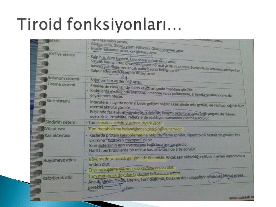Tiroid fonksiyonları…