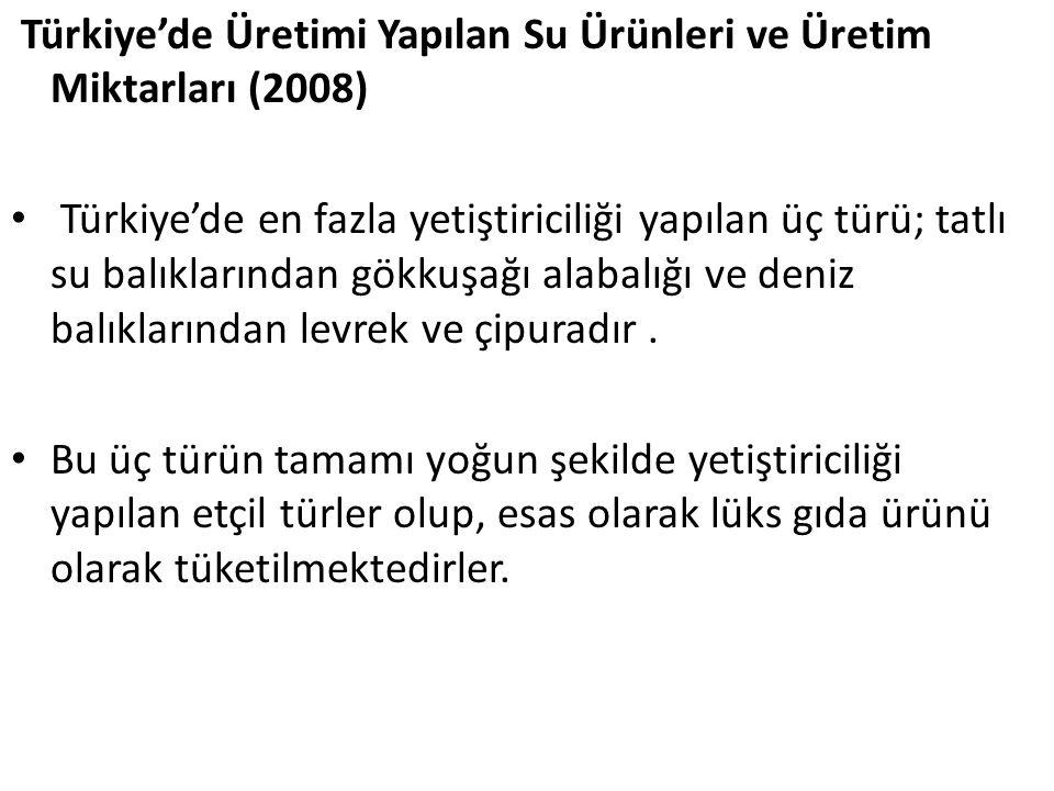 Türkiye'de Üretimi Yapılan Su Ürünleri ve Üretim Miktarları (2008)