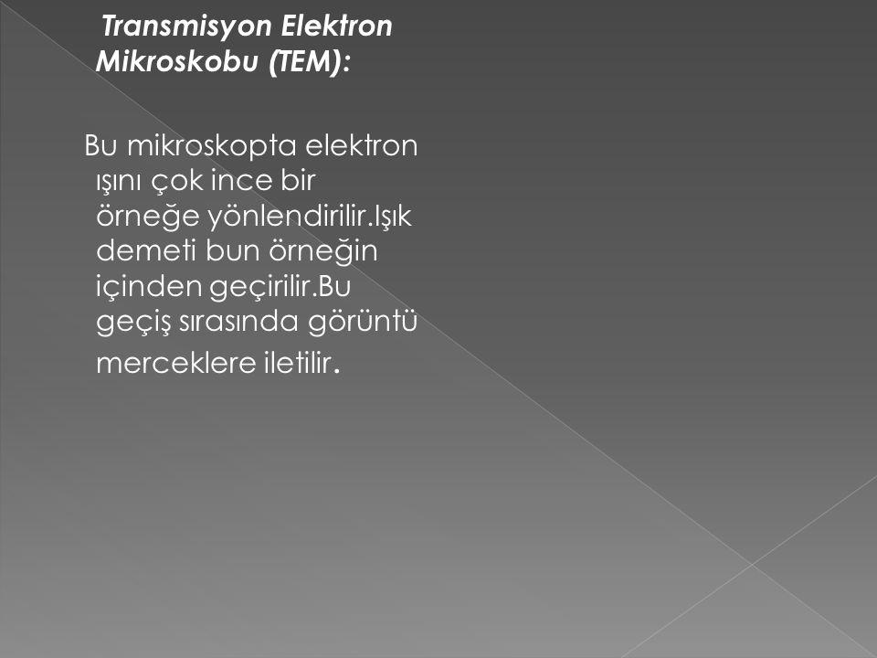 Transmisyon Elektron Mikroskobu (TEM):