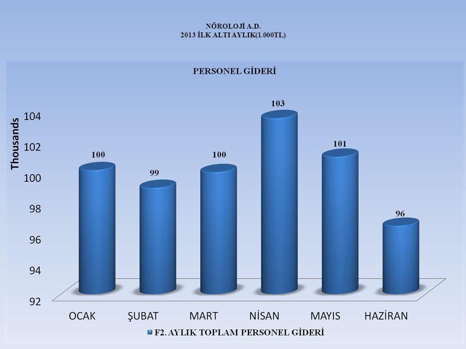 NÖROLOJİ A.D. 2013 İLK ALTI AYLIK(1.000TL)