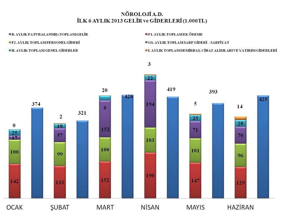 NÖROLOJİ A.D. İLK 6 AYLIK 2013 GELİR ve GİDERLERİ (1.000TL)