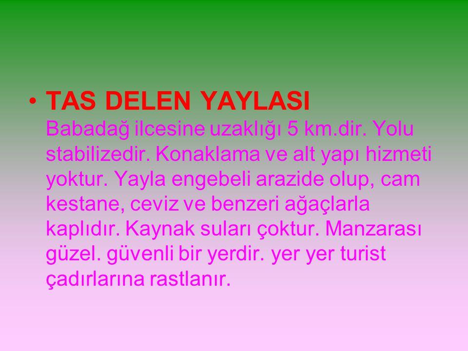TAS DELEN YAYLASI Babadağ ilcesine uzaklığı 5 km. dir
