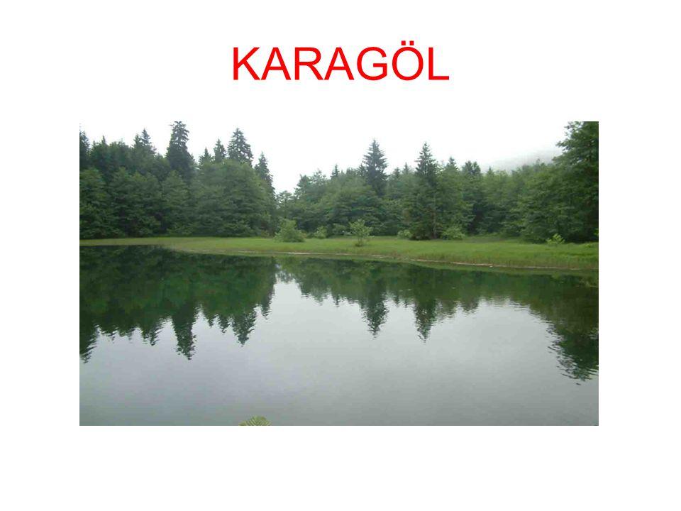 KARAGÖL