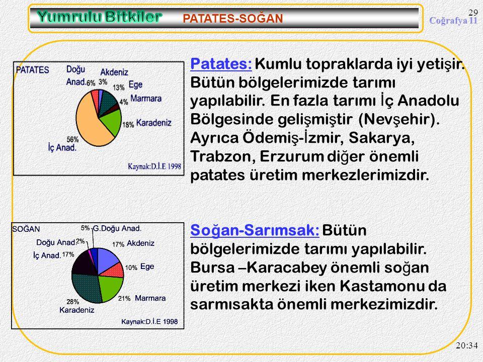 09.04.2017 PATATES-SOĞAN.