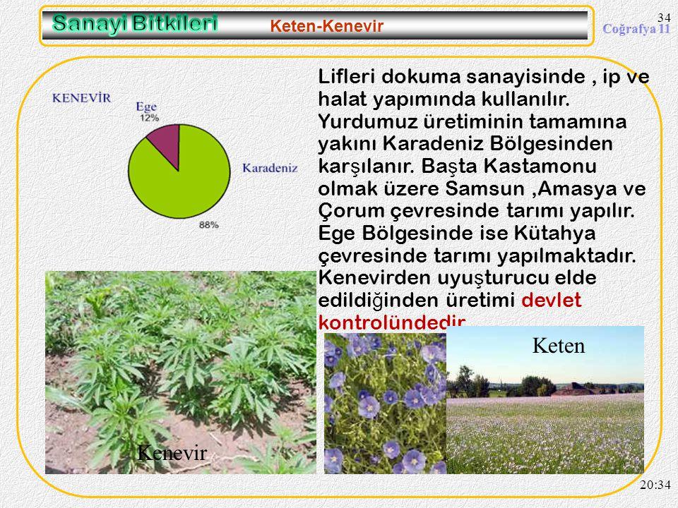 Sanayi Bitkileri Keten Kenevir
