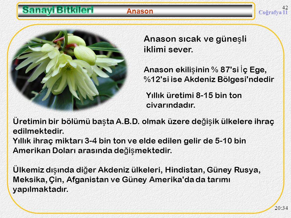 Sanayi Bitkileri Anason sıcak ve güneşli iklimi sever.