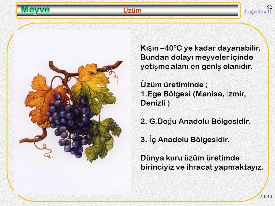 09.04.2017 Meyve. Üzüm. Kışın –40ºC ye kadar dayanabilir. Bundan dolayı meyveler içinde yetişme alanı en geniş olanıdır.