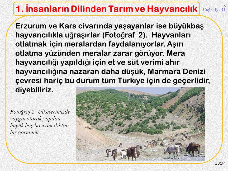 1. İnsanların Dilinden Tarım ve Hayvancılık