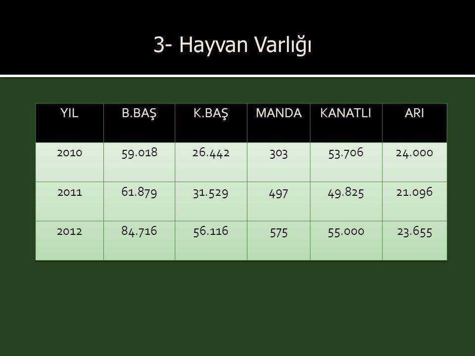 3- Hayvan Varlığı YIL B.BAŞ K.BAŞ MANDA KANATLI ARI 2010 59.018 26.442