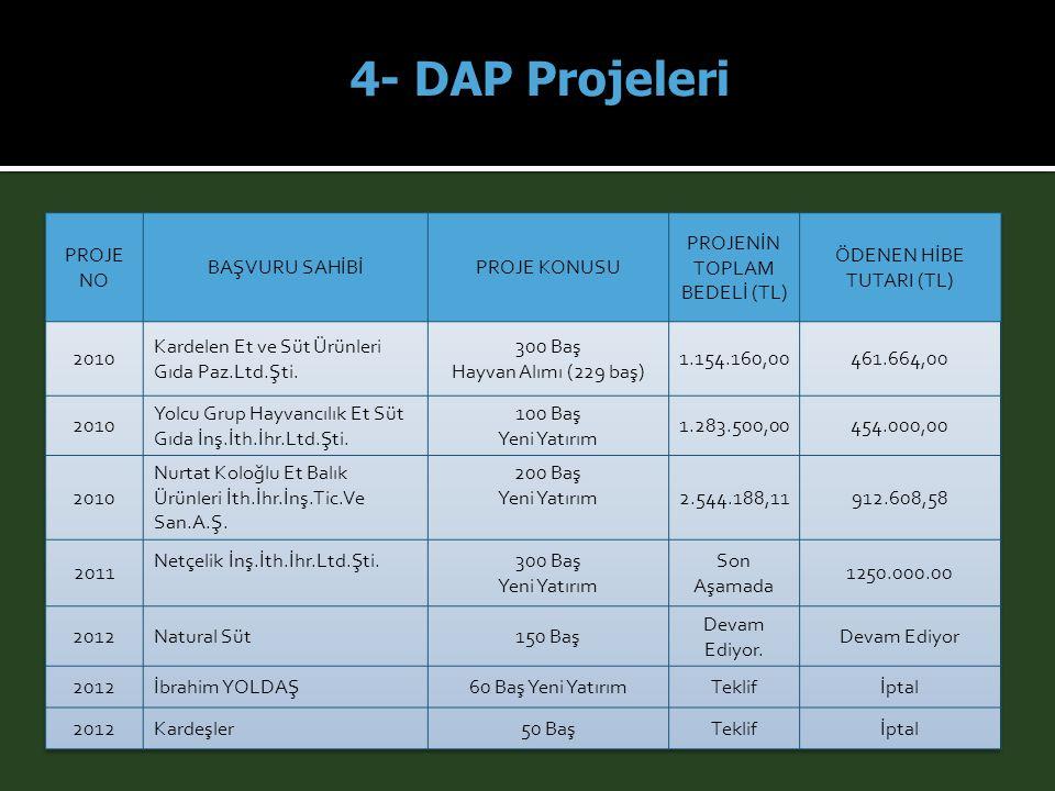 4- DAP Projeleri PROJE NO BAŞVURU SAHİBİ PROJE KONUSU