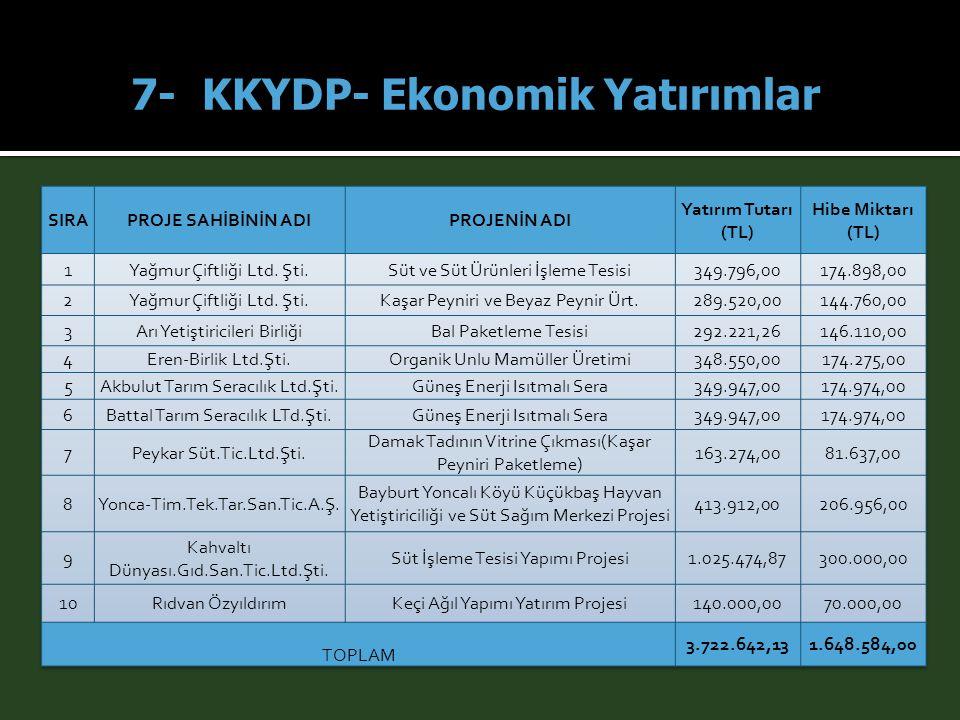 7- KKYDP- Ekonomik Yatırımlar