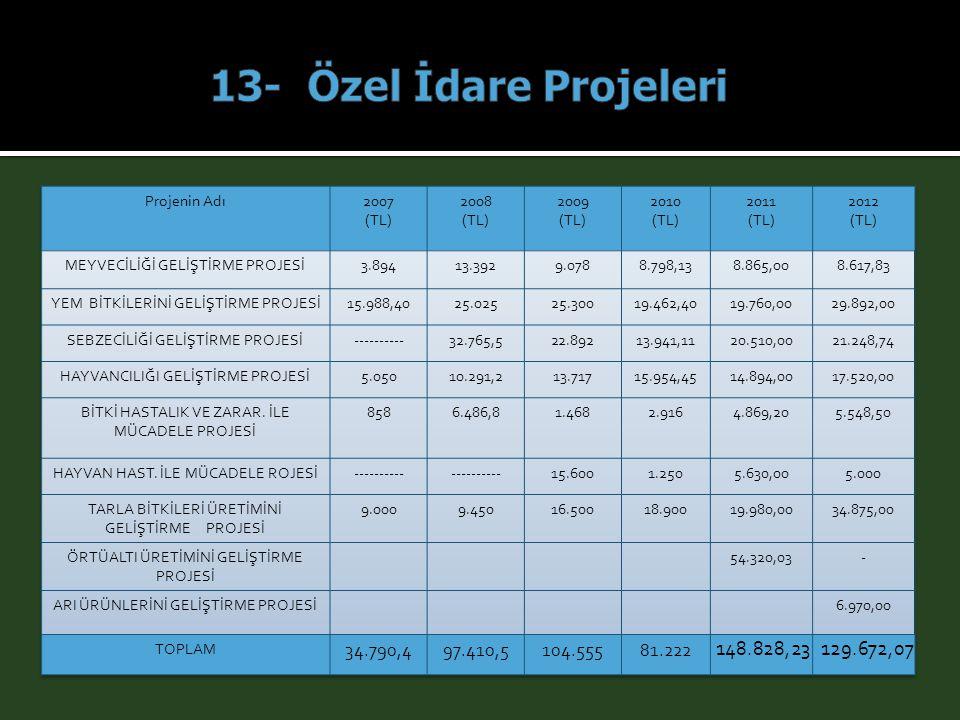13- Özel İdare Projeleri Projenin Adı. 2007. (TL) 2008. 2009. 2010. 2011. 2012. MEYVECİLİĞİ GELİŞTİRME PROJESİ.