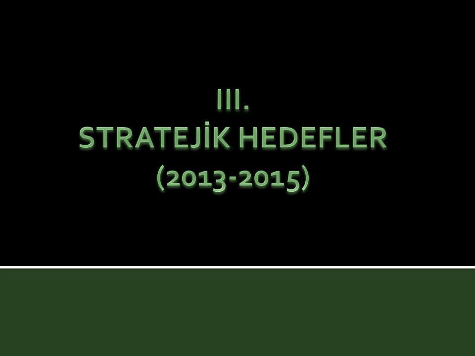 III. STRATEJİK HEDEFLER (2013-2015)