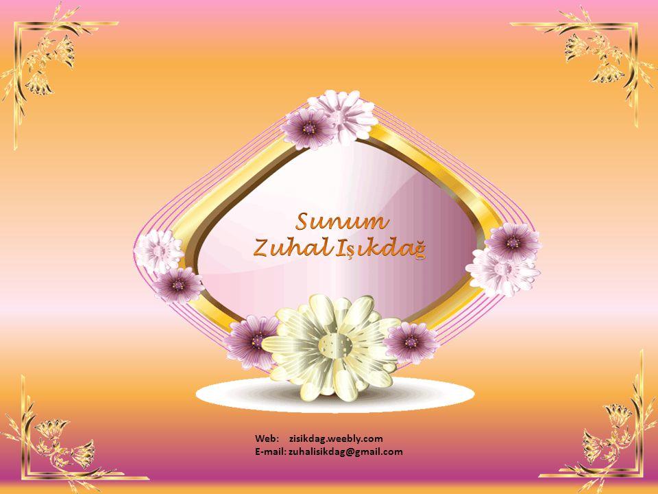 Sunum Zuhal Işıkdağ Web: zisikdag.weebly.com