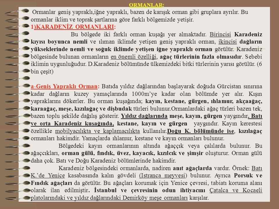1)KARADENİZ ORMANLARI: