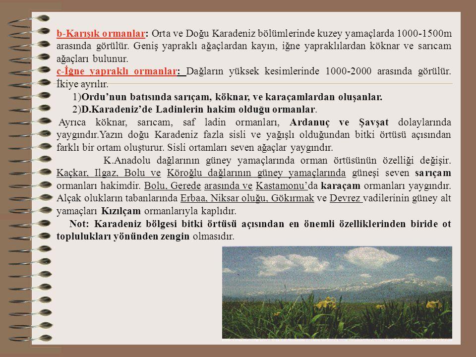 b-Karışık ormanlar: Orta ve Doğu Karadeniz bölümlerinde kuzey yamaçlarda 1000-1500m arasında görülür. Geniş yapraklı ağaçlardan kayın, iğne yapraklılardan köknar ve sarıcam ağaçları bulunur.