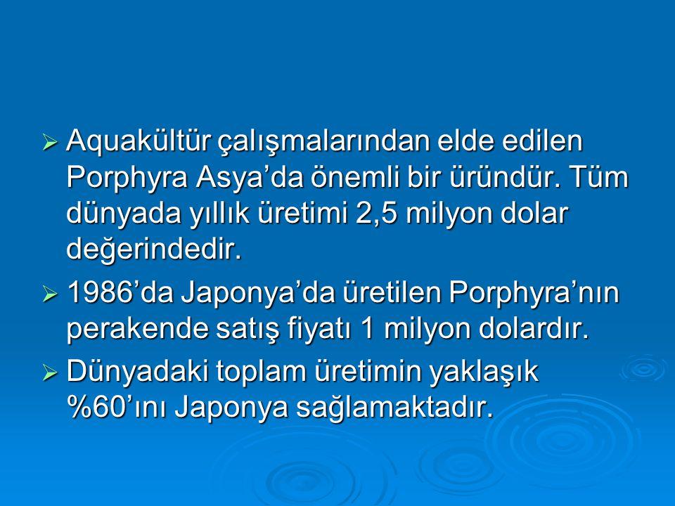 Aquakültür çalışmalarından elde edilen Porphyra Asya'da önemli bir üründür. Tüm dünyada yıllık üretimi 2,5 milyon dolar değerindedir.
