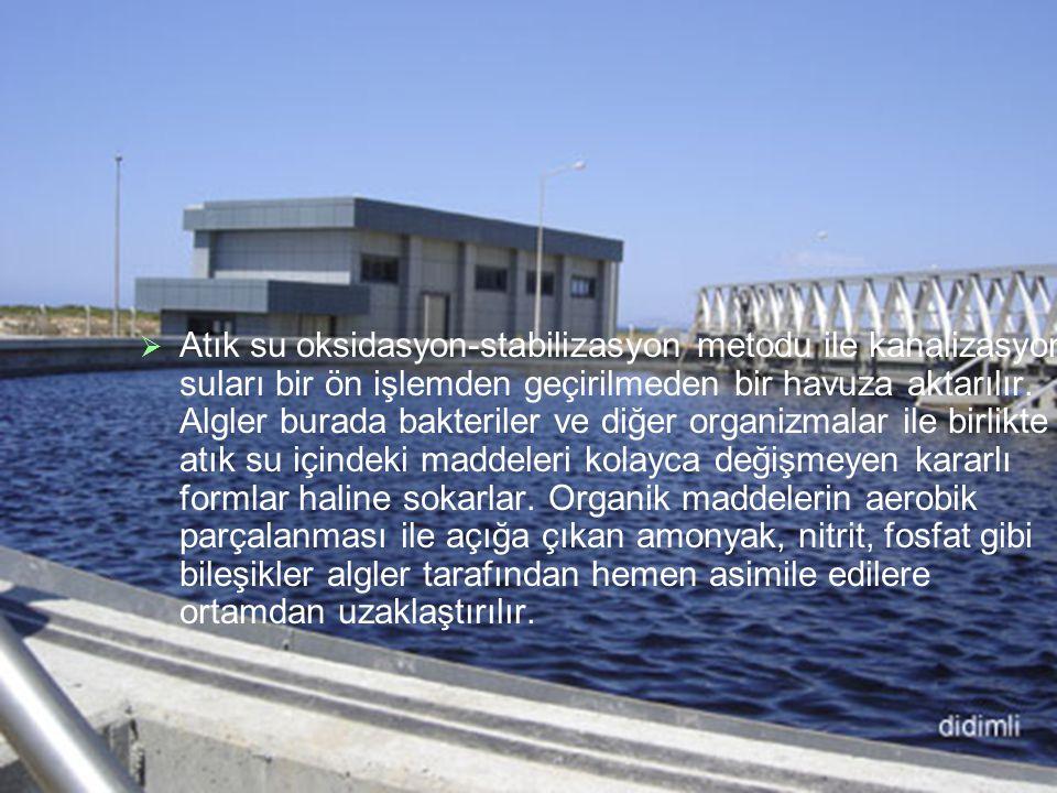 Atık su oksidasyon-stabilizasyon metodu ile kanalizasyon suları bir ön işlemden geçirilmeden bir havuza aktarılır.