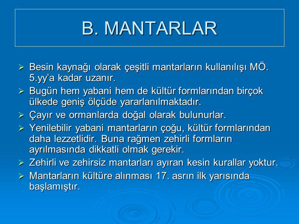 B. MANTARLAR Besin kaynağı olarak çeşitli mantarların kullanılışı MÖ. 5.yy'a kadar uzanır.