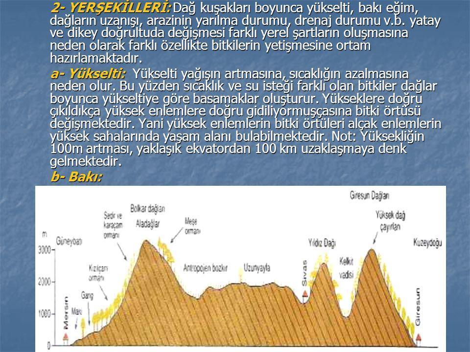 2- YERŞEKİLLERİ: Dağ kuşakları boyunca yükselti, bakı eğim, dağların uzanışı, arazinin yarılma durumu, drenaj durumu v.b. yatay ve dikey doğrultuda değişmesi farklı yerel şartların oluşmasına neden olarak farklı özellikte bitkilerin yetişmesine ortam hazırlamaktadır.