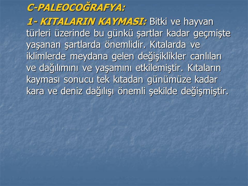 C-PALEOCOĞRAFYA:
