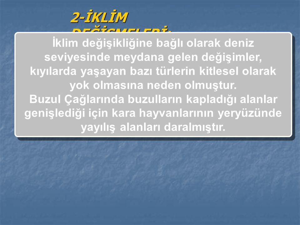 2-İKLİM DEĞİŞMELERİ:
