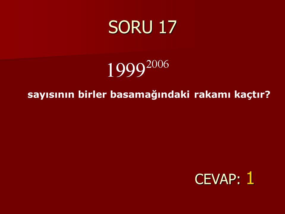 SORU 17 sayısının birler basamağındaki rakamı kaçtır CEVAP: 1